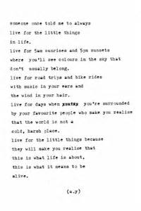 Little Things in Life Poem