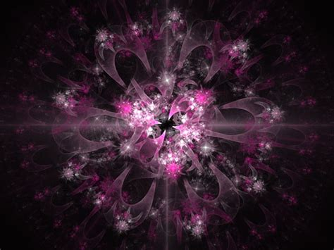 pink fractal  stock photo public domain pictures