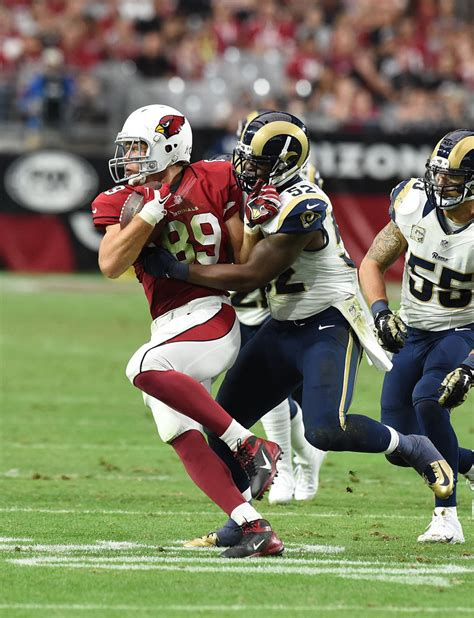 st louis rams at arizona cardinals st louis rams v arizona cardinals zimbio