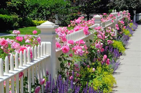 Flower Garden Fence 25 Garden Fences In Varied Styles And Materials Garden Club