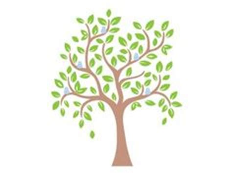 cute trees trees on pinterest tree wall decals tree drawings and