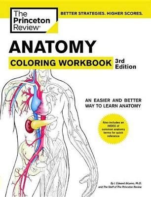 anatomy and physiology coloring workbook answers page 98 anatomy coloring workbook 3rd edition by princeton review