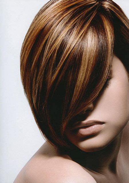 honey highlights for dark brown hair on inverted bob 283 best images about hair color ideas on pinterest her