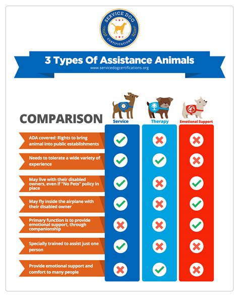 difference between service and therapy the difference between a psychiatric service and an emotional support animal