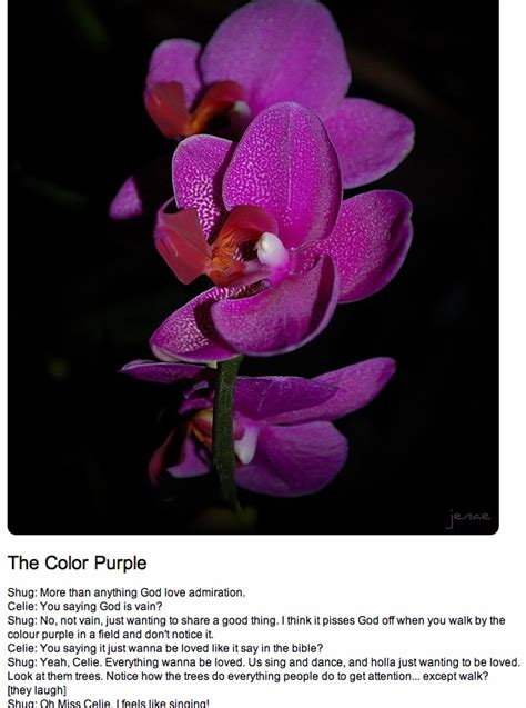 color purple quotes you and me must never part 17 best images about my color purple u and me must never