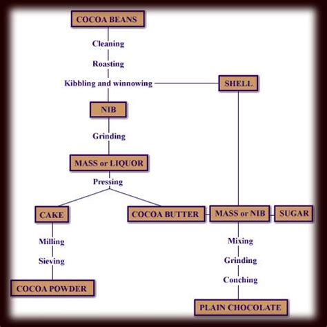 production of chocolate flowchart going on chocolate the poor misunderstood