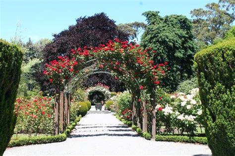 Christchurch Botanical Gardens Central Garden Christchurch Botanic Gardens Picture Of Christchurch Botanic Gardens