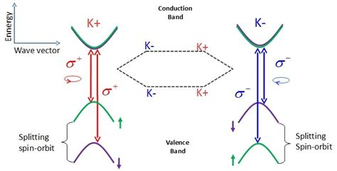 spin diode wiki transition metal dichalcogenide monolayers wiki everipedia
