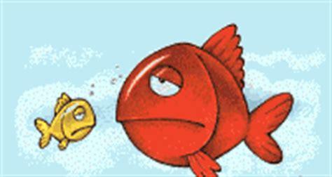 Vitamin Minyak Ikan Soft Gel Fish Vitmin Bulu Anjing Dan Kucing maggot pakan alami ikan protein tinggi kliping dunia ikan dan mancing