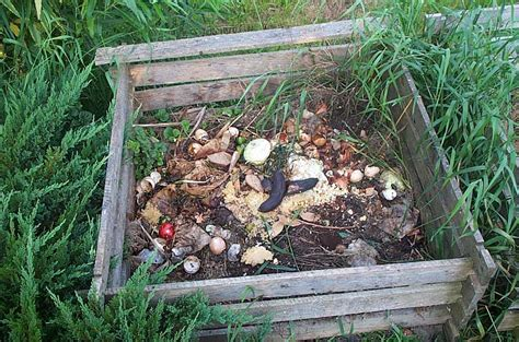 Garden In A Can by Soil And Compost Our Organic Garden