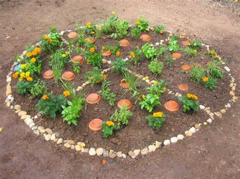 Pizza Garden how to plant a pizza garden how tos diy