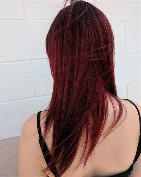 aveda hair color the 25 best aveda color ideas on hair