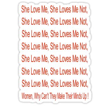 She Me Not Essay by Quot She Me She Me Not Why Can T They Make Thier Minds Up Quot Stickers By Stude