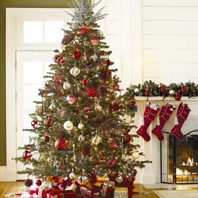 christmas tree pic sinussister tag archive for christmas tree