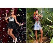 Fantasias De Carnaval Da Dress To Pra 2015  Just Lia
