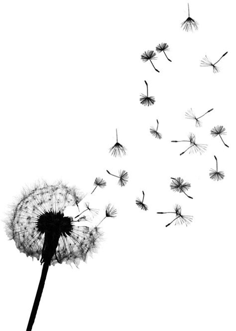 small tattoo prices uk dandelion watercolor dandelion seeds temporary