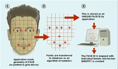 pattern recognition and image analysis using matlab image processing fundamentals basics of matlab and