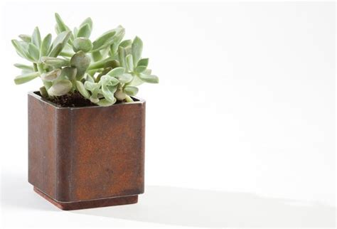 modern planters indoor hss planter modern indoor pots planters other metro by customatic