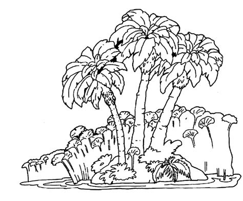 coloring pages of jungle trees best photos of forest tree coloring sheet forest trees