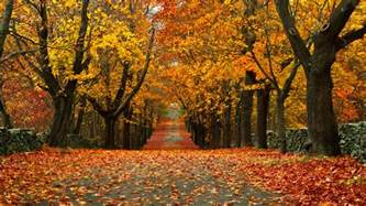 video 28 small towns with the most beautiful fall foliage the morning call
