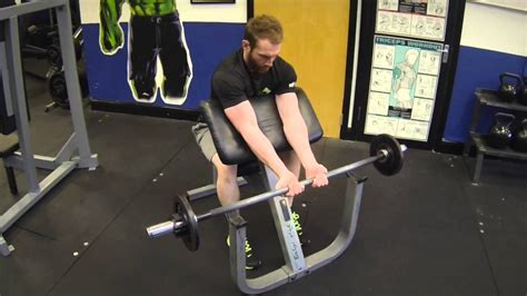 seated barbell curl seated grip concentration barbell curl