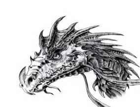 dragon face coloring coloring pages draw simple dragon free dragon coloring pages