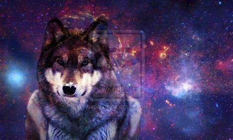 wallpaper galaxy wolf galaxy wolf wallpaper wallpapersafari