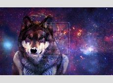 Galaxy Tumblr Hipster Wolf Related Keywords Suggestions Long Tail