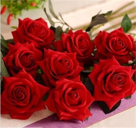 imagenes de rosas terciopelo rosas de terciopelo fotos moda nupcial comunidad bodas