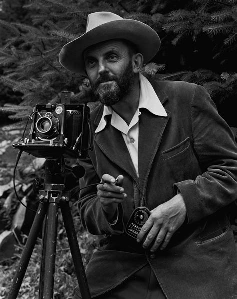 ansel adams in the ansel adams i know what love is gwarlingo