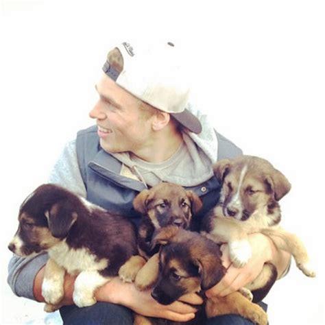 gus dogs gorgeous olympic freeskier gus kenworthy adopts sochi stray dogs showbiz