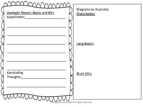 Animal Adaptation Worksheets by Animal Adaptations Worksheets Worksheets
