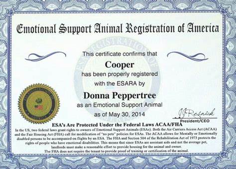 emotional support certificate exle service certification emotional support 2 exle service