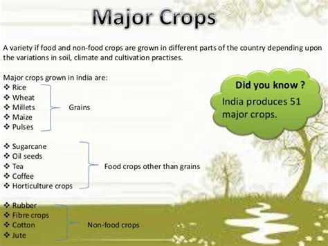 cropping pattern types agriculture for class 10