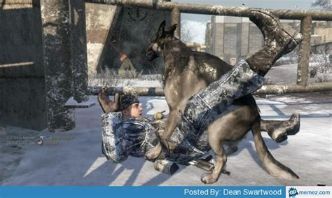 Call Of Duty Dog Meme - call of duty dogs memes com