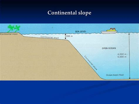 Pacific Continental Shelf by Science Flashcards At Kannapolis Middle School Studyblue