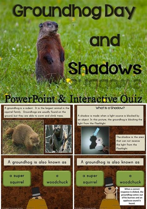 groundhog day meaning if no shadow groundhog day shadows powerpoint with interactive quiz
