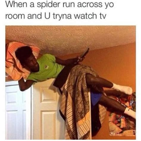 Afraid Of Spiders Meme - when a spider run across yo room and u tryna watch tv