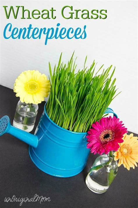 wheat grass centerpieces centerpieces showers and