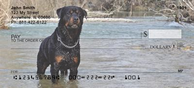 rottweiler personal checks rottweilers in the water checks rottweilers in the water personal checks