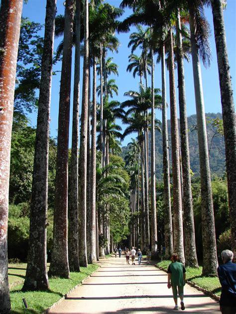 jardim botanico  rio de janeiro top places  rio de