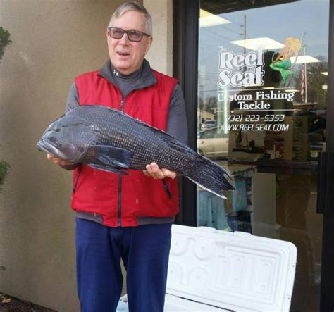 State Of New Jersey Records Pending New Jersey Black Sea Bass State Record Delaware