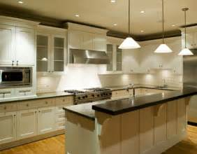 White Cabinet Kitchen Ideas by White Kitchen Cabinets Stylize Your House Cabinets Direct