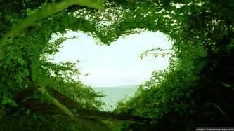 beautiful love nature wallpaper hd desktop wallpapers love