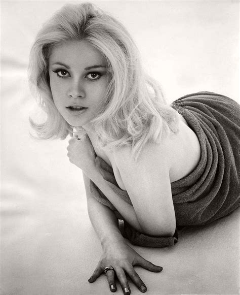 hollywood actress lisa top 20 hottest hollywood actresses of the 1960s in b w
