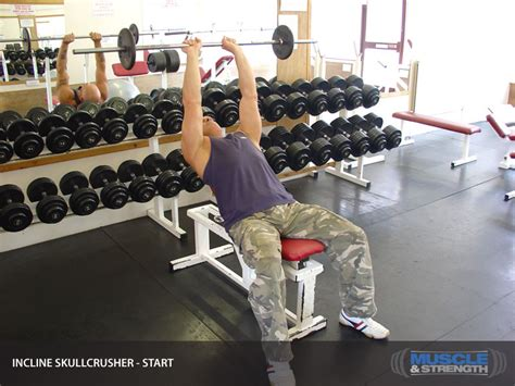 incline bench skull crushers click to enlarge