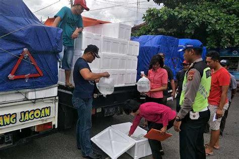 Box Udang Ratusan Box Benih Udang Disita Di Gilimanuk Balipost