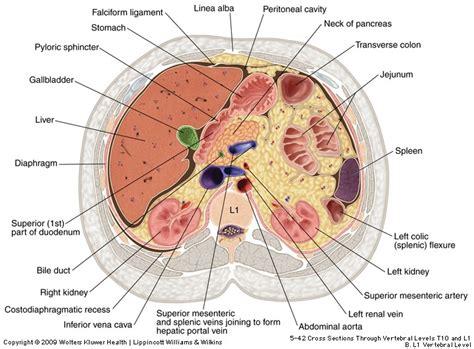 clinical cases cholelithiasis