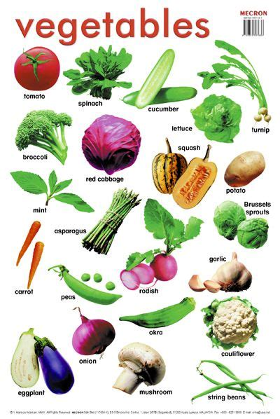 6 vegetables name in 43 best images about vegetables and fruit list names on
