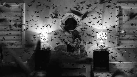 imagenes de locos suicidas 191 qu 233 pasa con el alma de los suicidas taringa